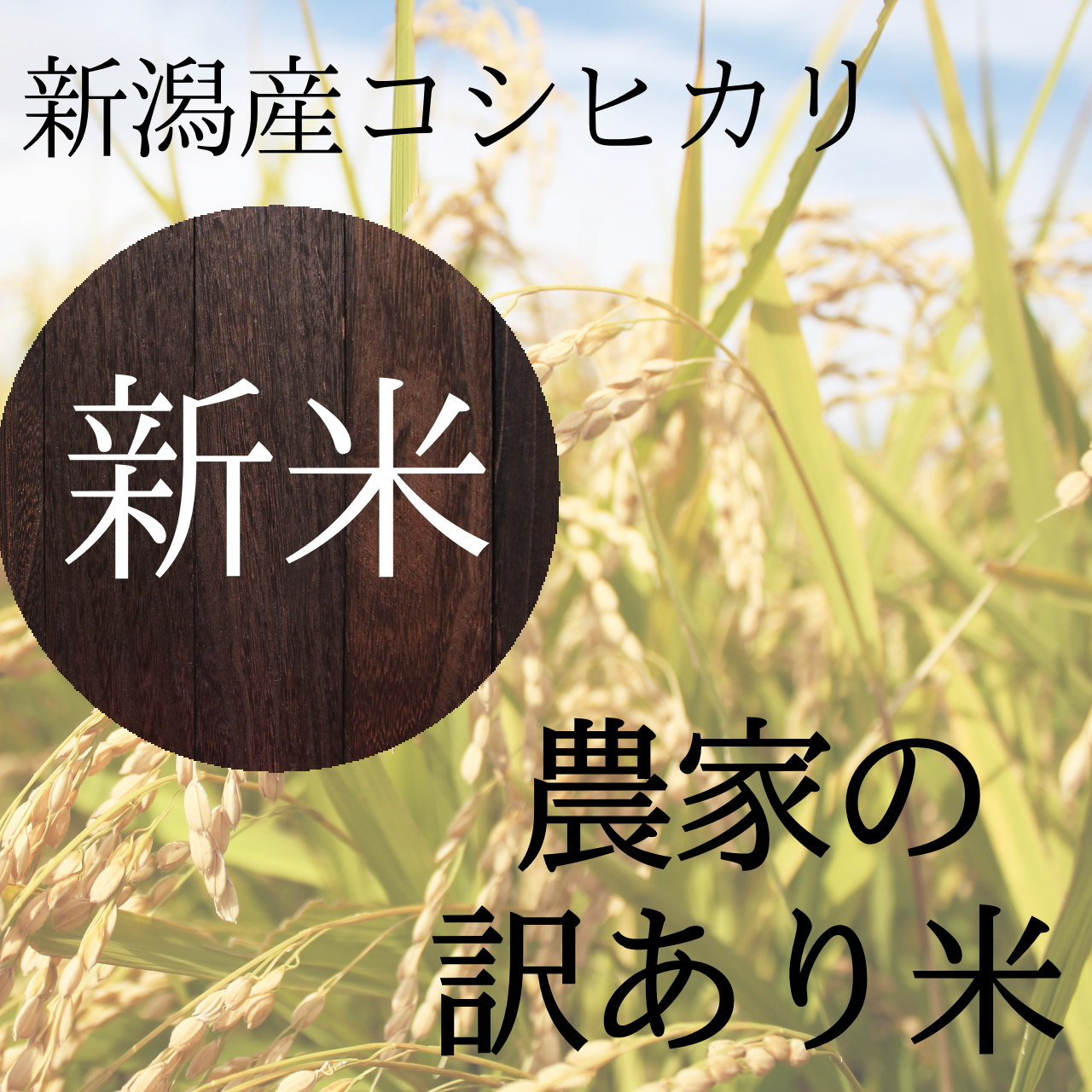 農家直送の新潟産コシヒカリが訳あり超特価 10キロ3580円!数量限定!! 20キロ以上で送料無料