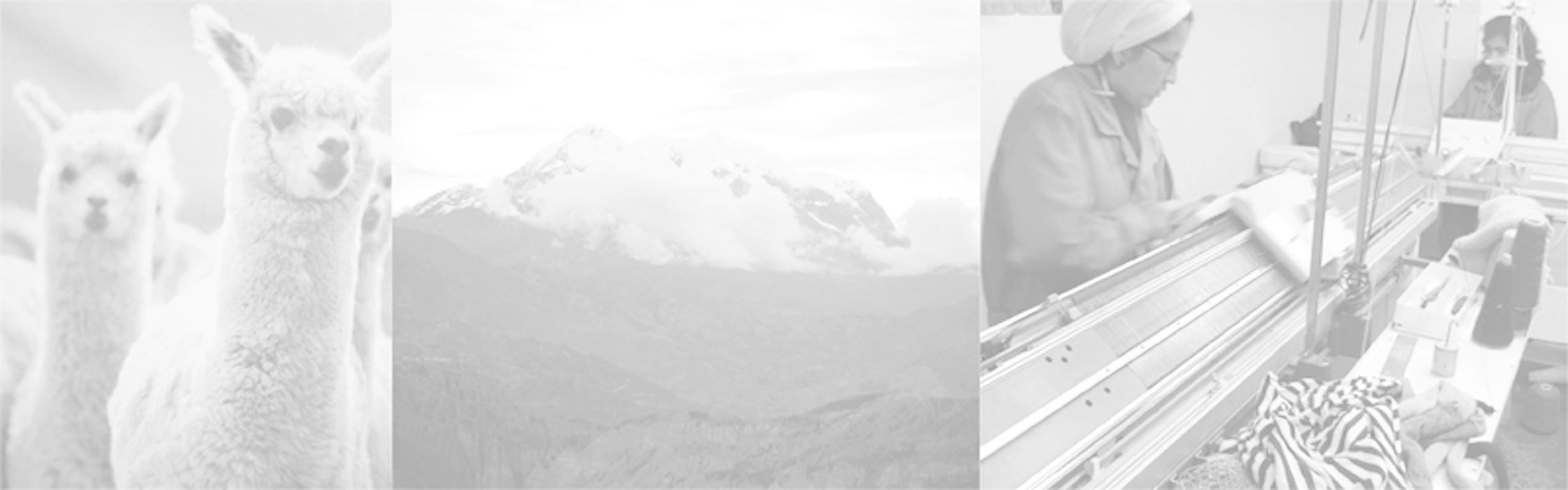 アルパカ100%のふわふわワッフル地のキッズ用ニットキャップ!! これで寒い冬も平気!