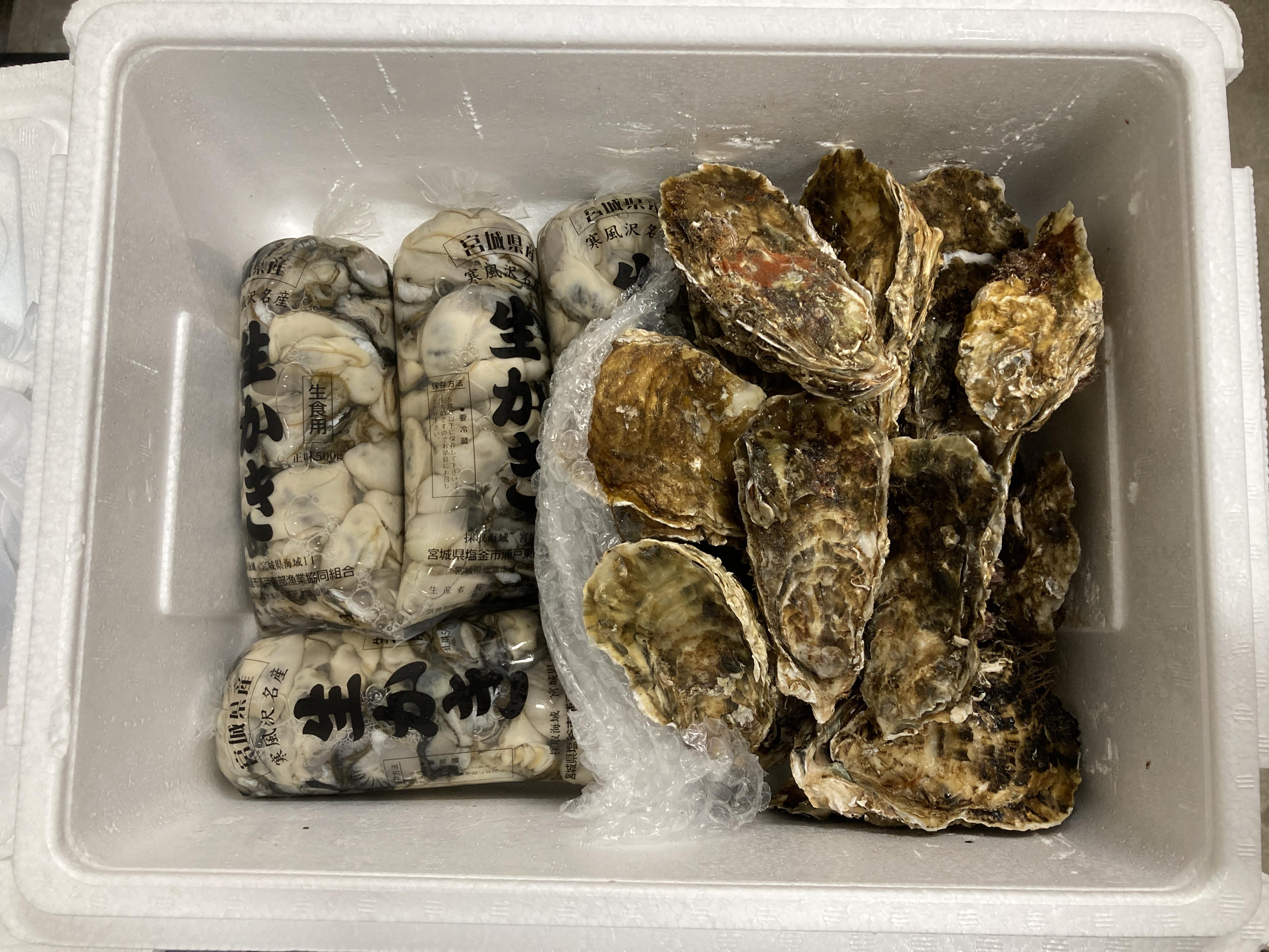 厳冬の海に育つ みちのく寒流の牡蠣 鮮度重視 即時発送 希少商品 今が旬