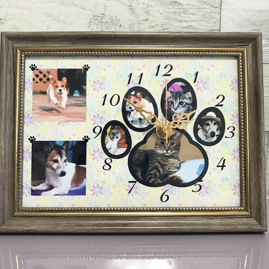 肉球時計🐾
