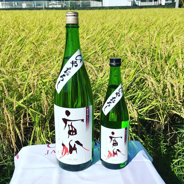 秋が旬の日本酒。期間限定/数量限定「ひやおろし純米原酒」発売しました。