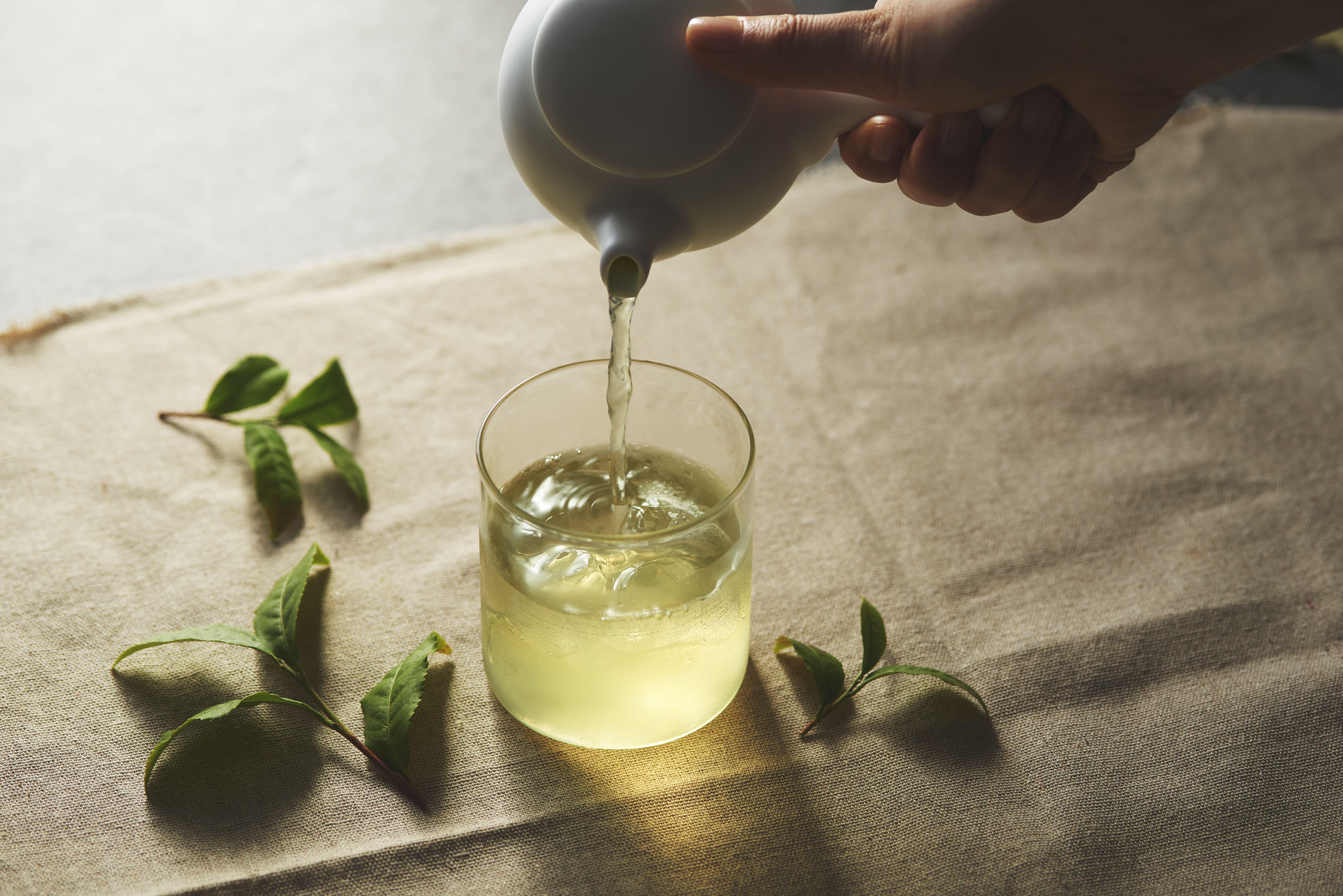 リッチな休憩♪|白毫銀針|白茶|茶葉販売|優しく繊細な味わい|