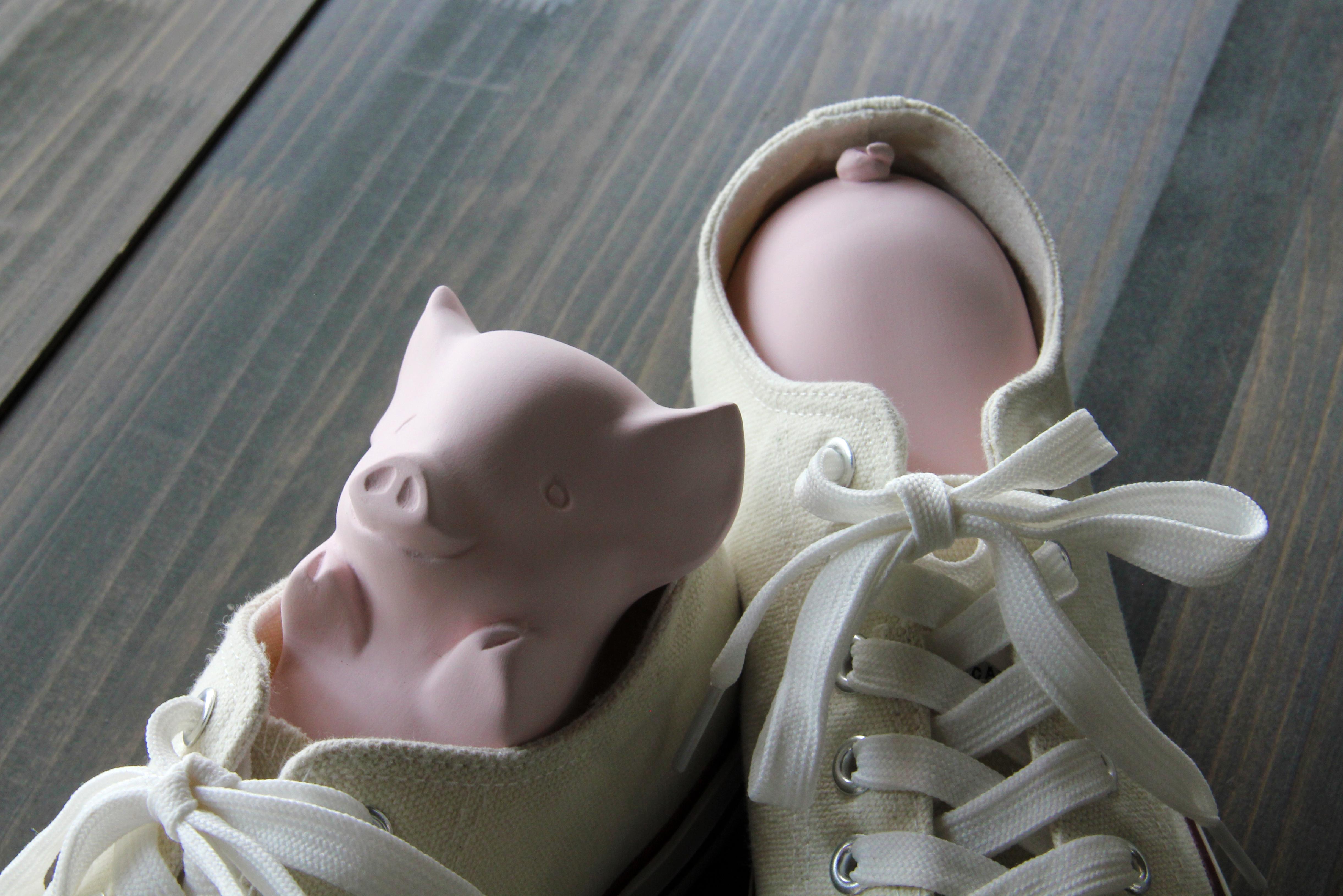靴の中をカラッと除湿・消臭!靴に住み着くブタちゃんが可愛い(^_^)