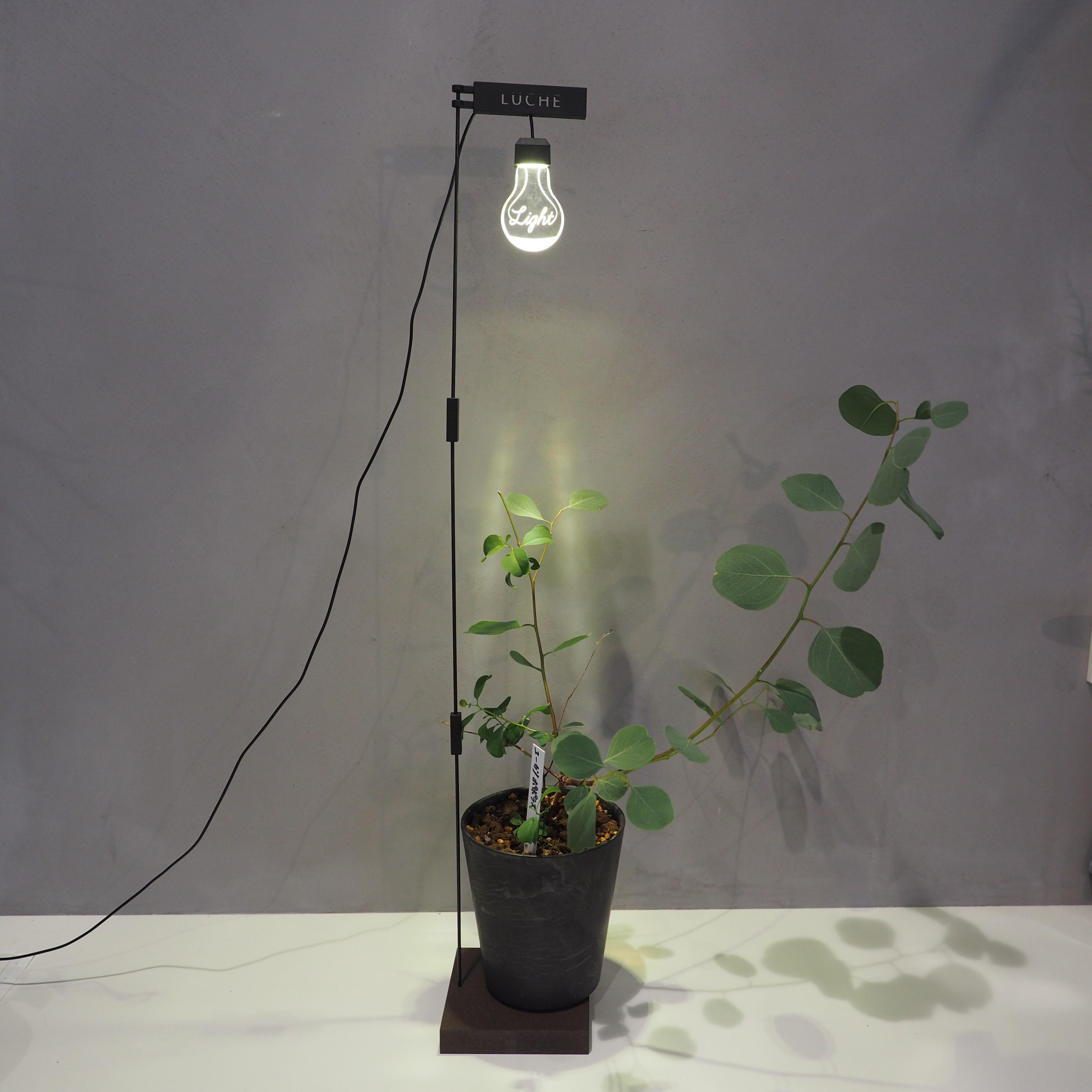 植物がよく育つLEDライト