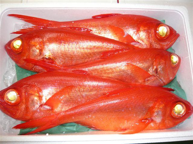 【今だけの限定品】ブランド「銚子つりきんめ」を使用した『金目鯛の煮付け』