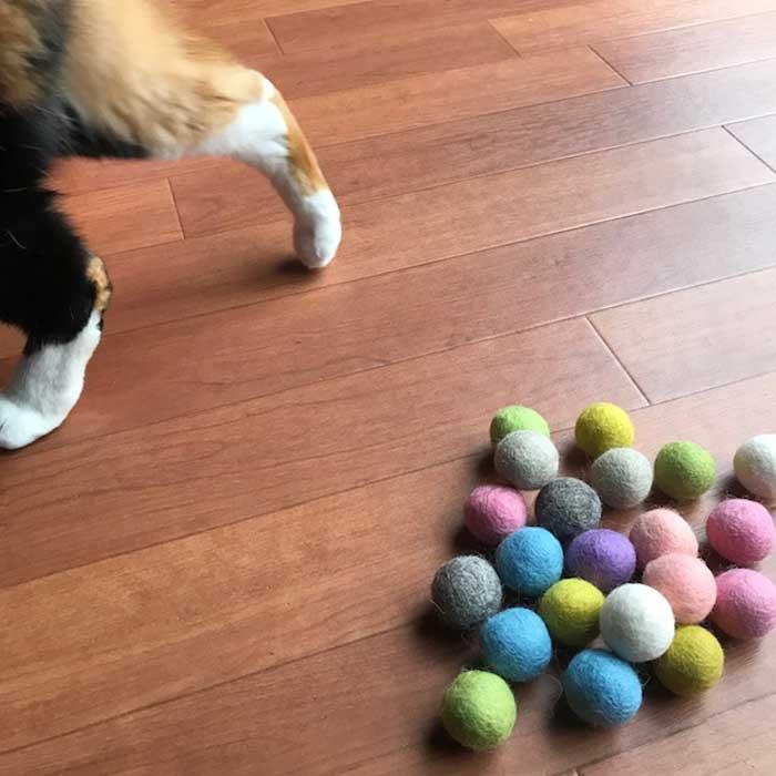 【猫のおもちゃの大定番!かわいいカラーで嬉しい20個入り おもちゃボール!】
