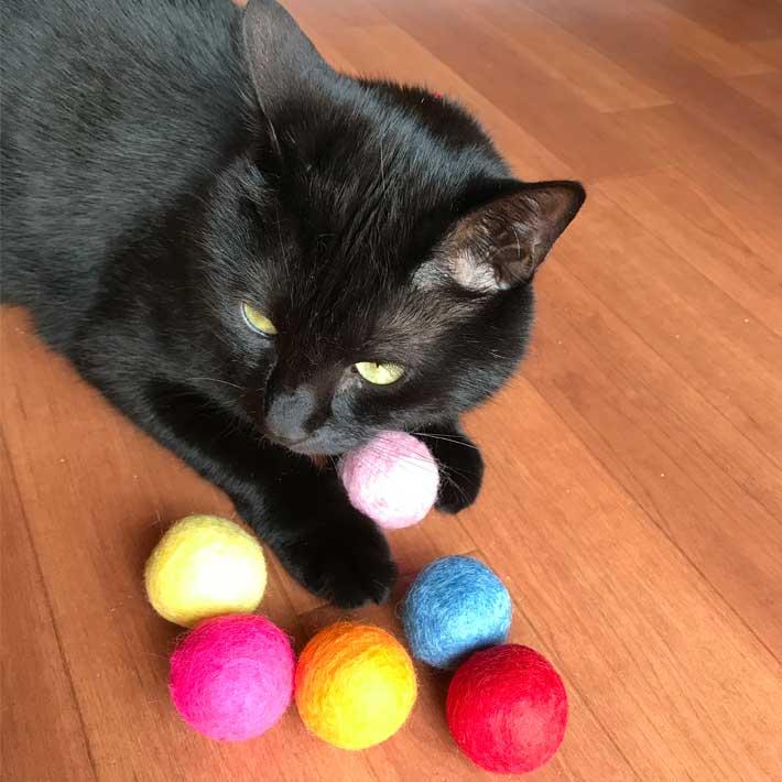 猫ちゃんまっしぐら!狩猟本能を刺激する定番だからこそ外さない、猫のおもちゃボール!