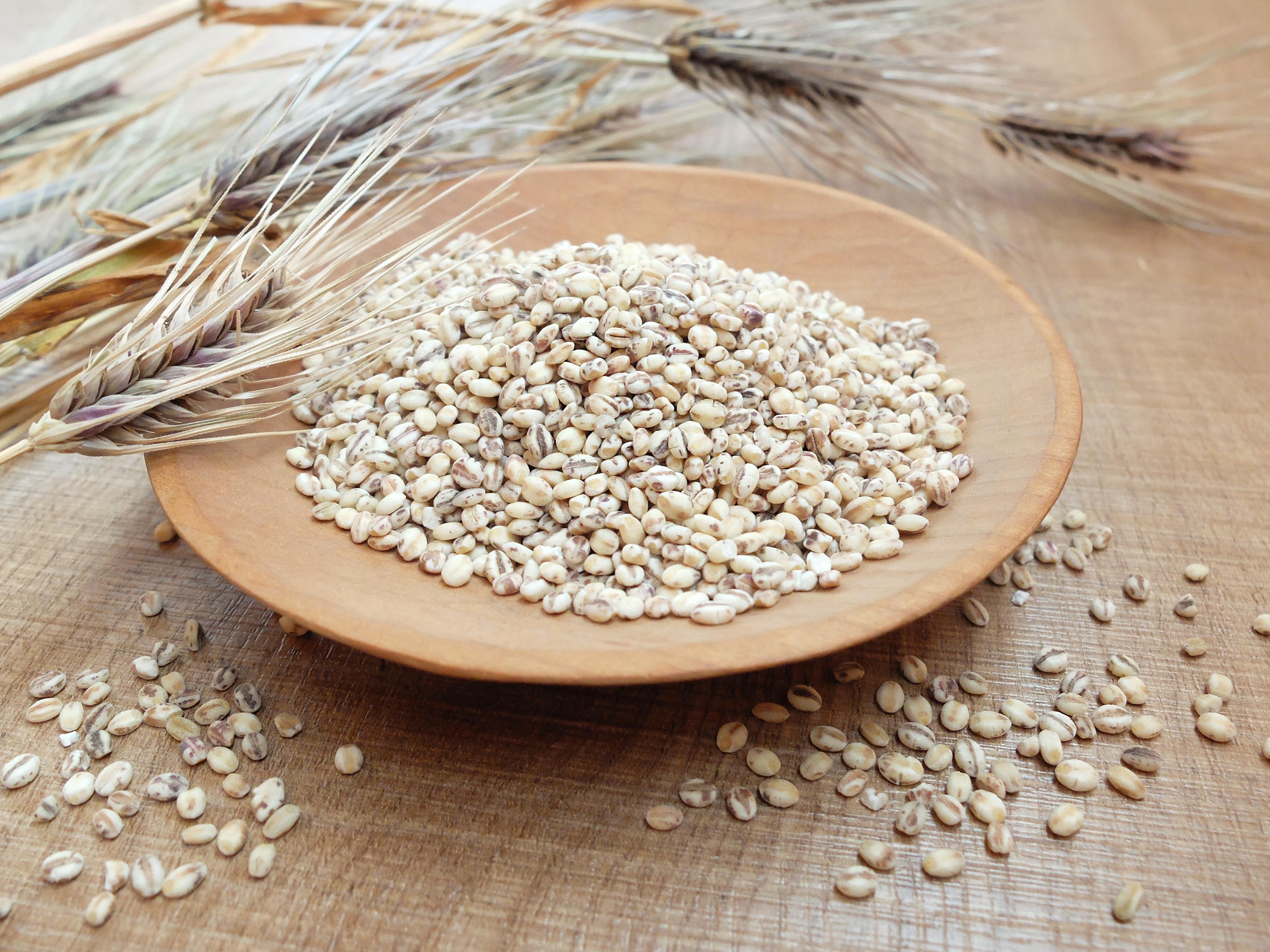 """【人気のヒミツ】食物繊維がお米の〇〇倍!テレビで話題沸騰の""""もち麦""""とは?"""