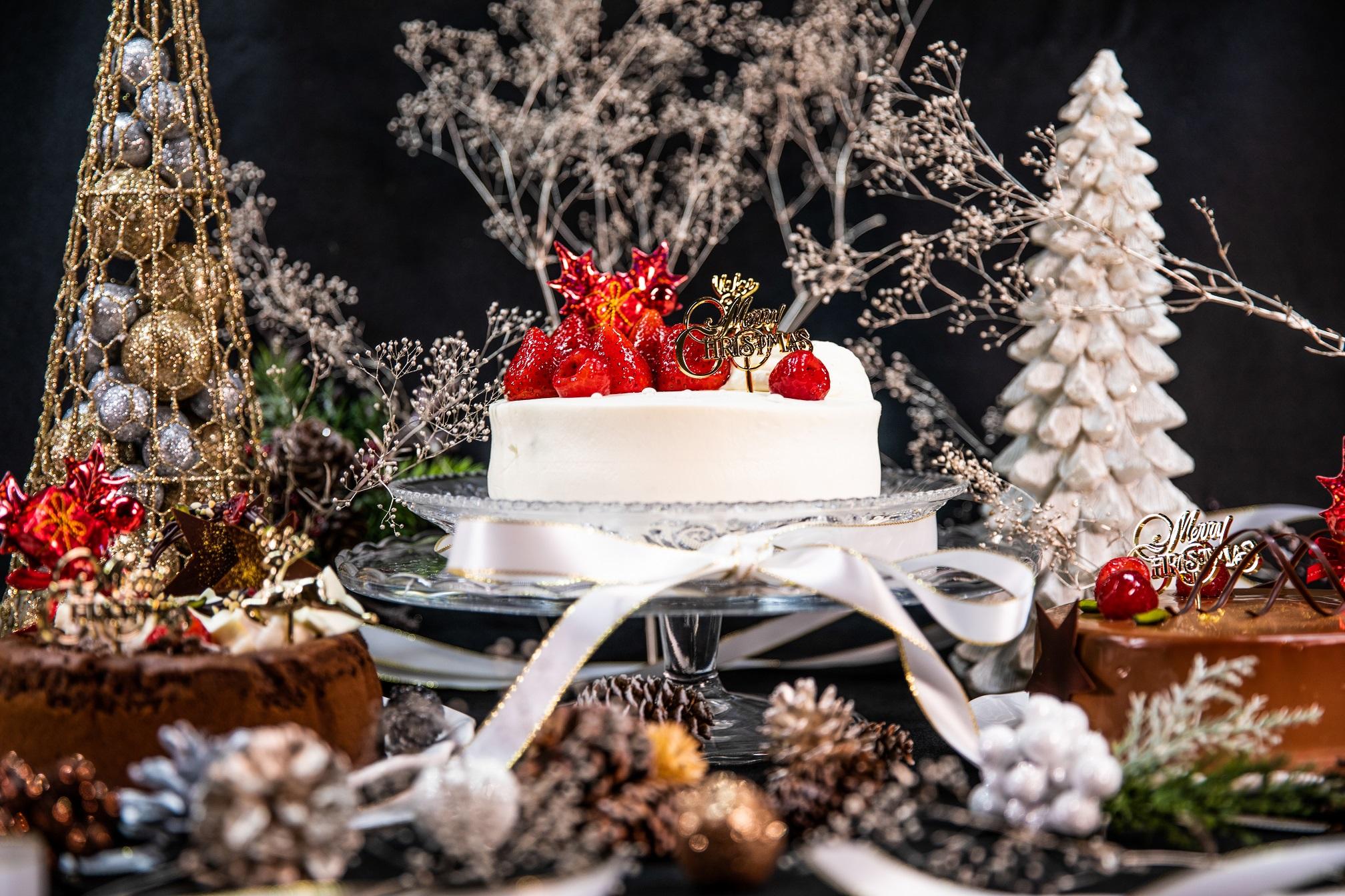 11月中ご予約でお得!チョコレート専門店のスペシャルなクリスマスケーキ