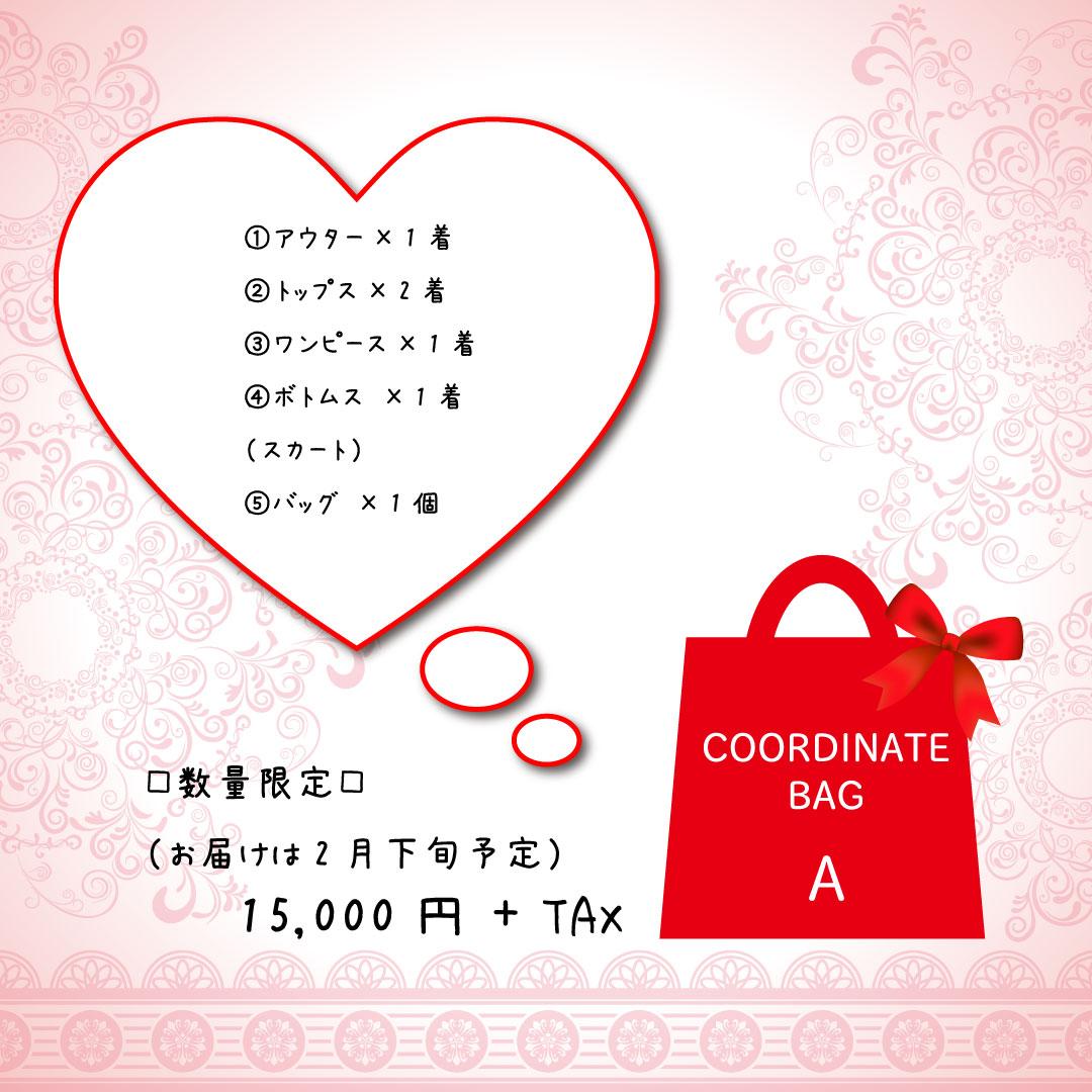 #mush女子 必見♡ 毎年恒例の『コーディネートバッグ』が今年初登場!!