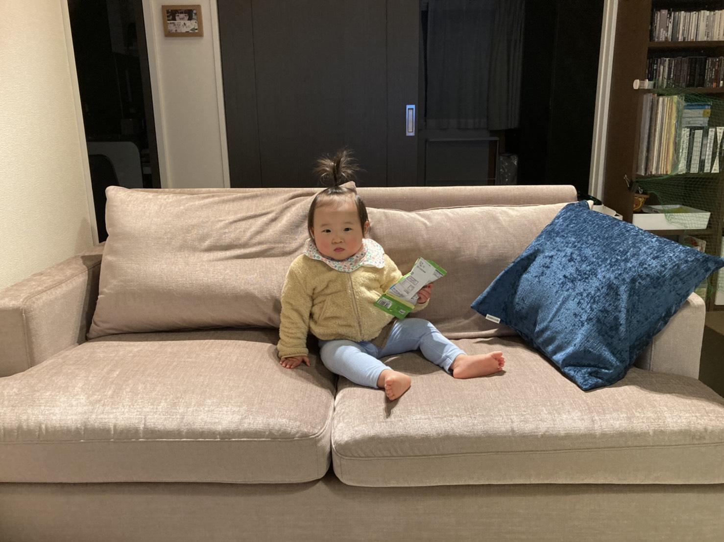 お客様のソファのあるお部屋ご紹介⑤―BLISS2Pソファ