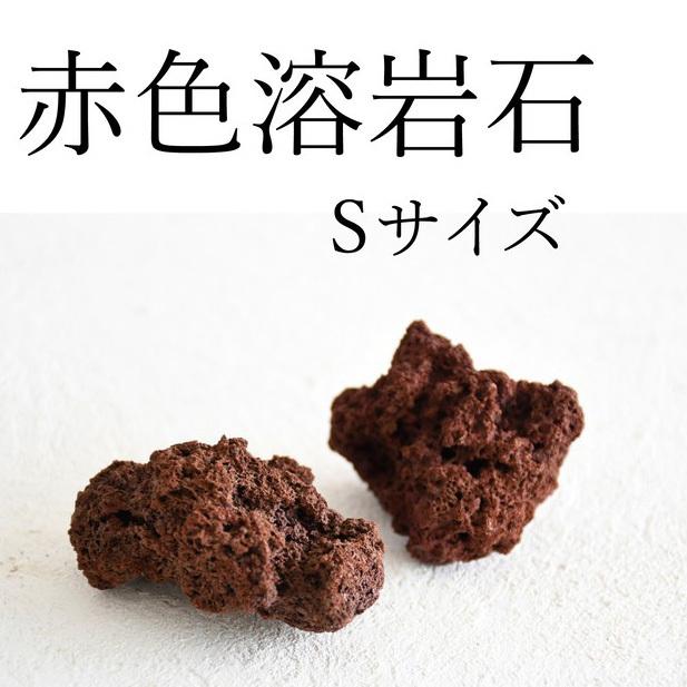 赤色溶岩石 Sサイズ(3〜5cm) 2個入り【レイアウト用・着生用】