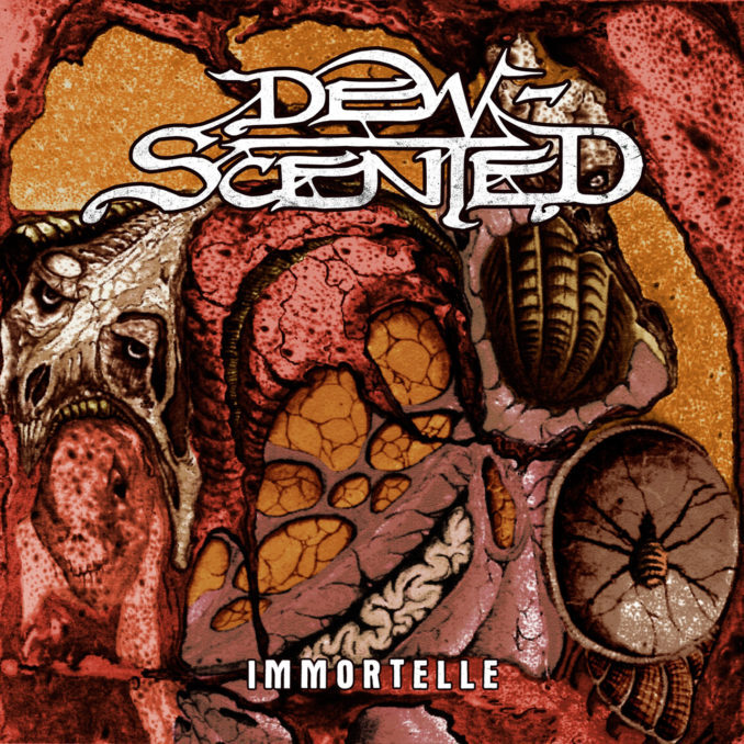 "DEW-SCENTED ""Immortelle""  (輸入盤)"