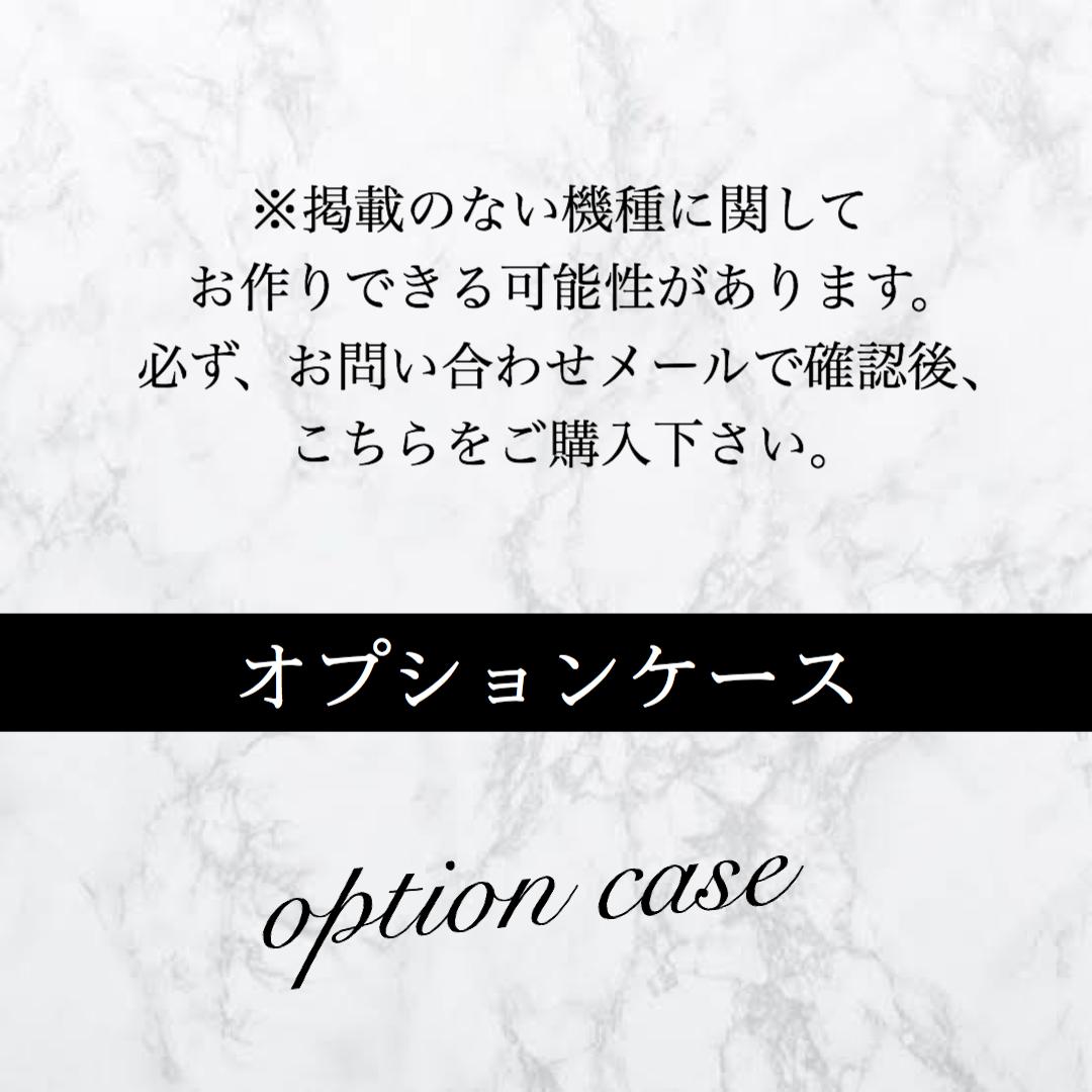 ※オプションケース