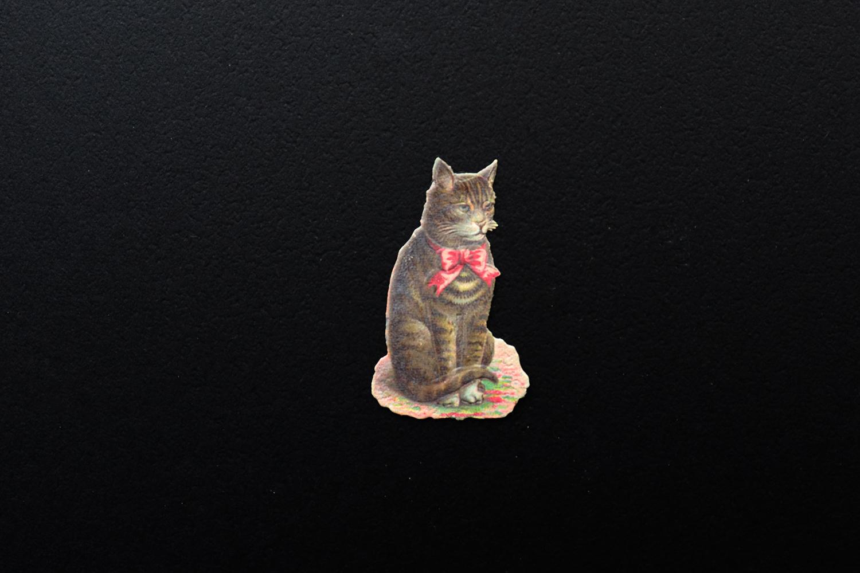 【ドイツ】猫のクロモス