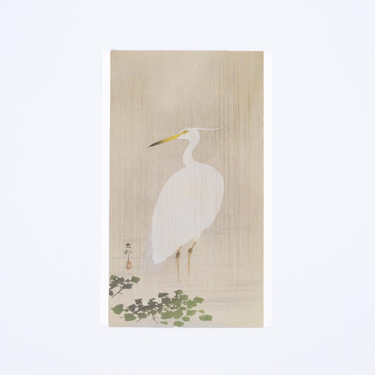 小原古邨ポストカード 雨中の小鷺