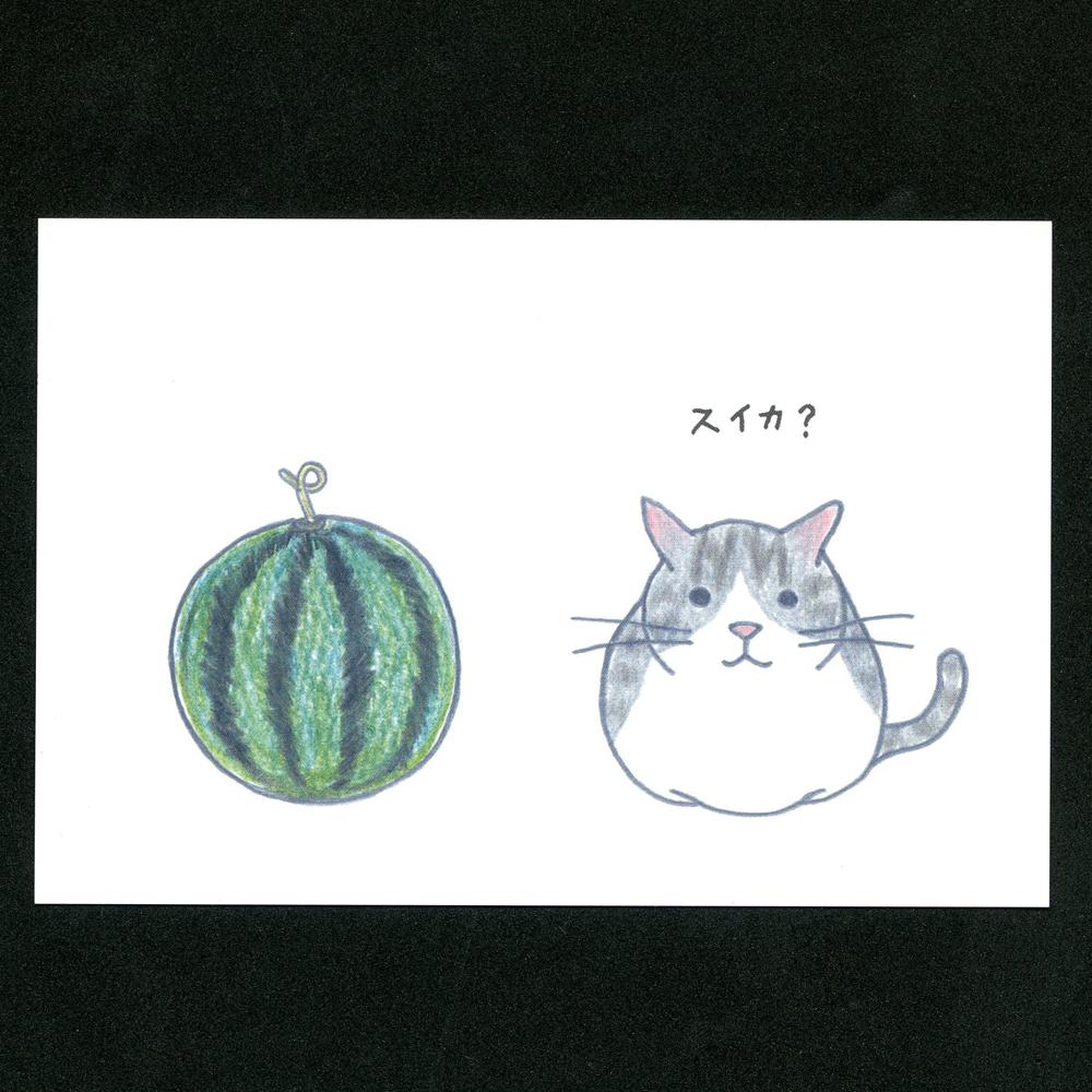 猫ポストカード(四季スイカ)