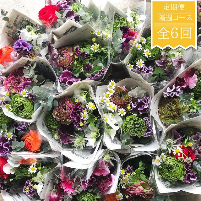 【横須賀市内地域限定】自宅で楽しむお花の定期便・隔週お届けコース(ご自宅用・当店厳選のファンフラワー)