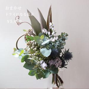 【生花】おまかせドライになる花束・5000円【bffb_5000】