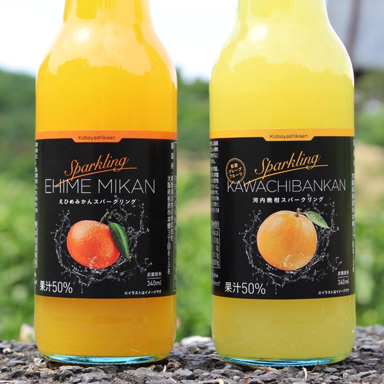 柑橘スパークリング・ジュース 340ml 2品種3本入り箱 (計6本)