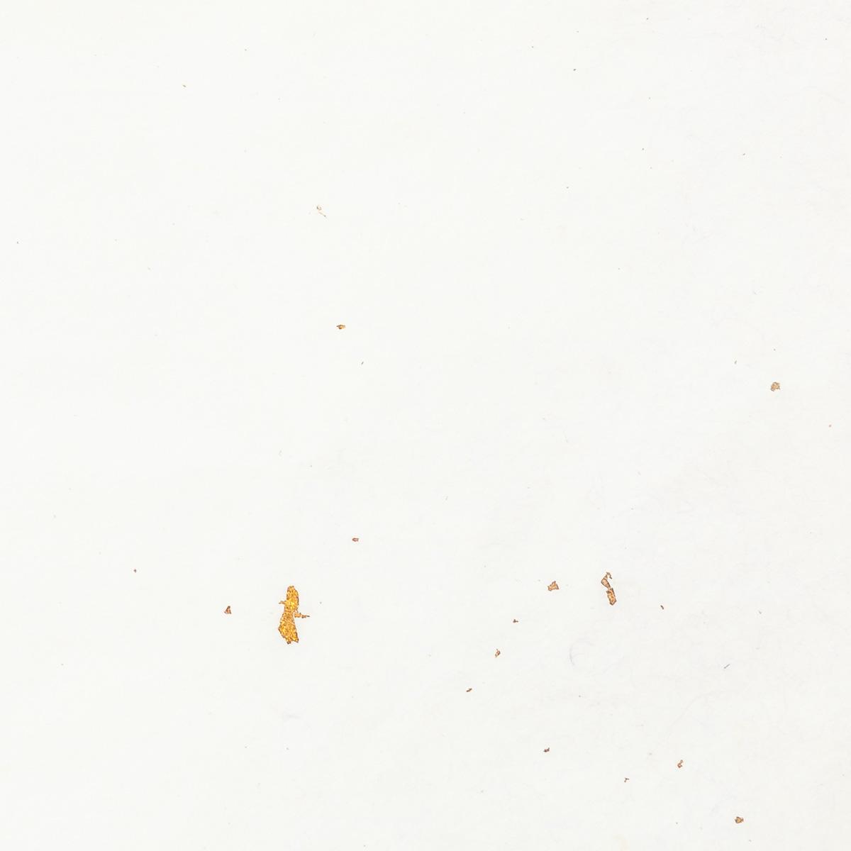 黒谷 かな料紙 二色ぼかし 純金入り 緑/紫