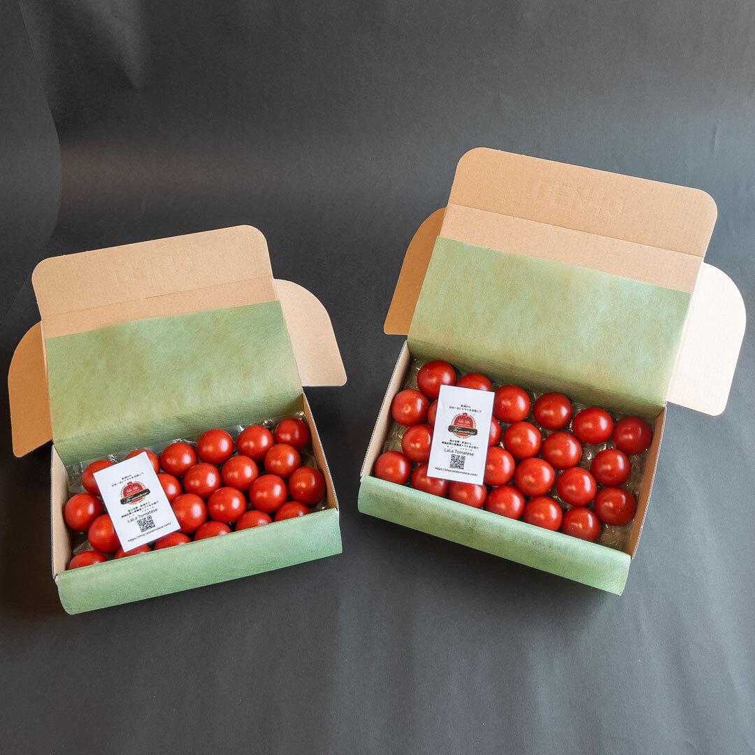 【送料無料】ララ・トマテーゼ フルーツトマト 350gお試しパック × 2箱