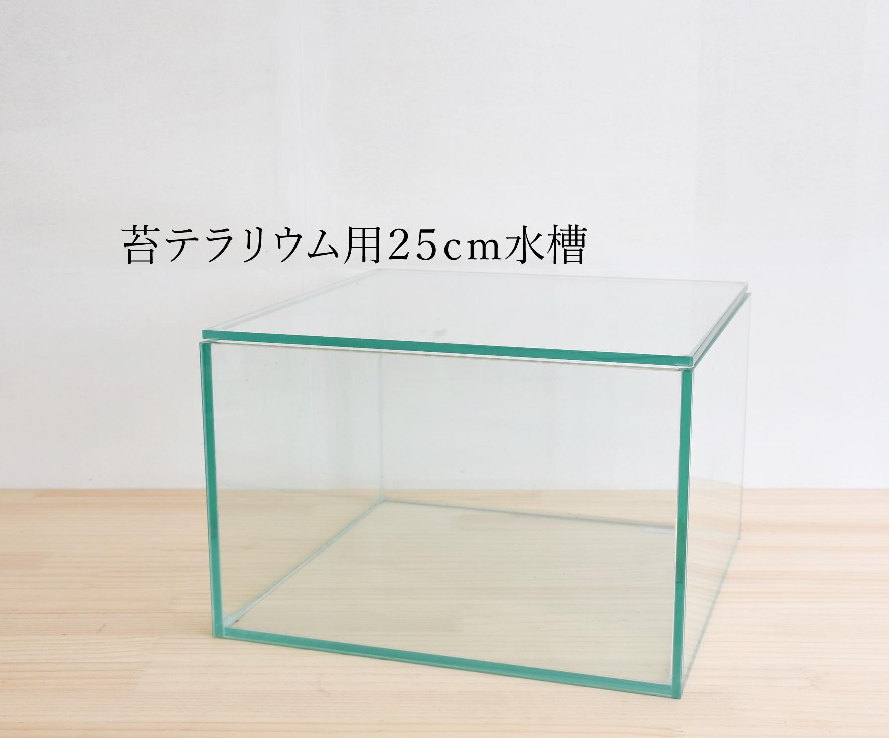 【ガラス容器】 苔テラリウム用 25x25cmガラス水槽 (250x250xh160mm)