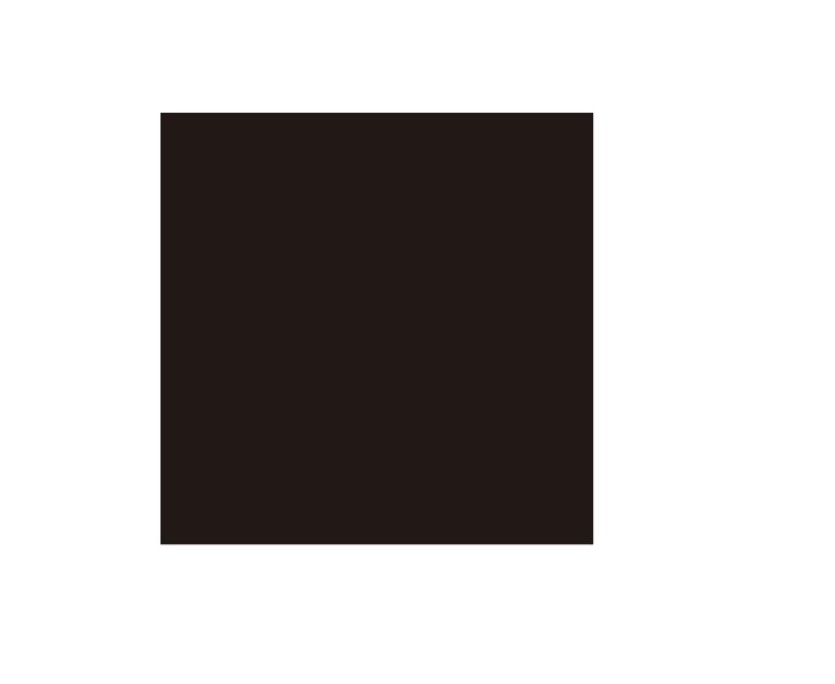 Persepolis 800 Series/KPS-P BLACK プレミアムブラック[磨](400角平)