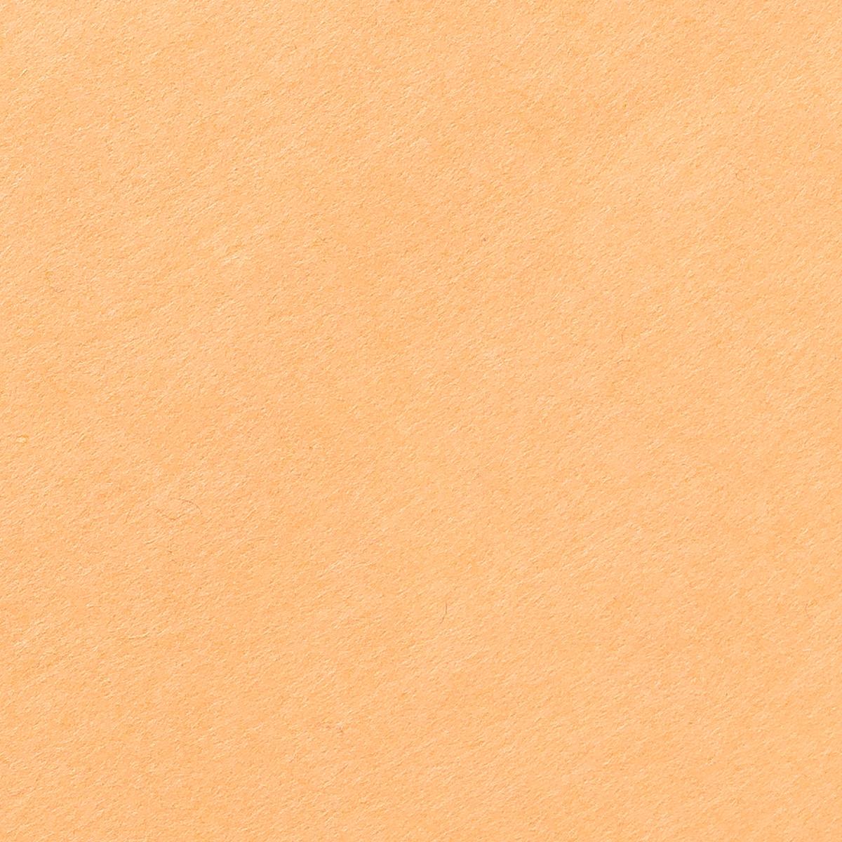 阿波 民芸紙 肌色