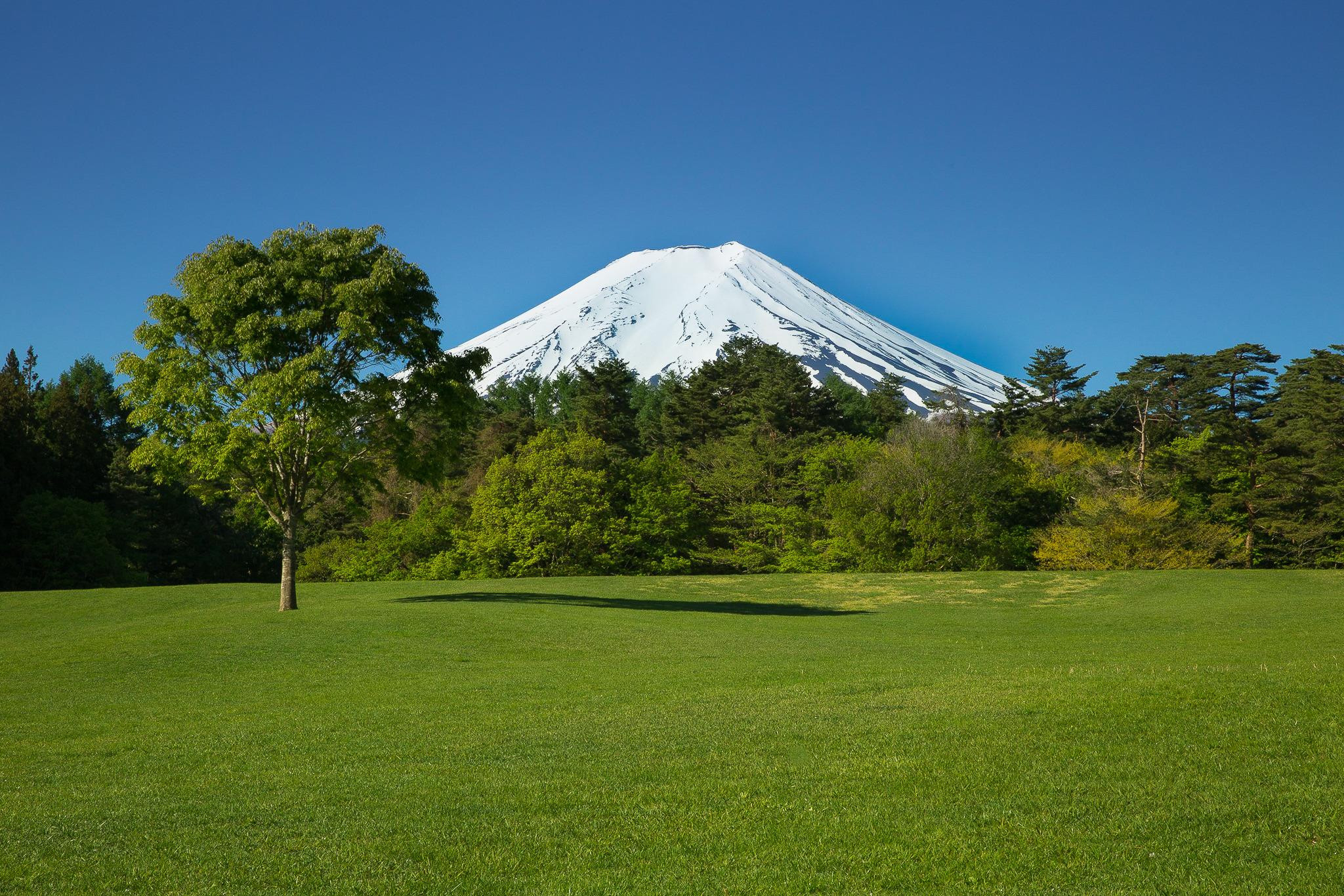 無料 富士山写真001[壁紙 フリー 素材]
