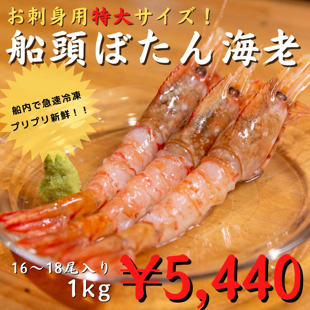 【大好評!】(0196)船凍本ボタン海老(お刺身用) 特大16/18