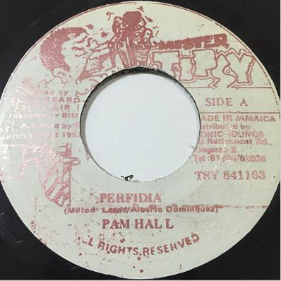 Pam Hall (パムホール) - Perfidia【7'】