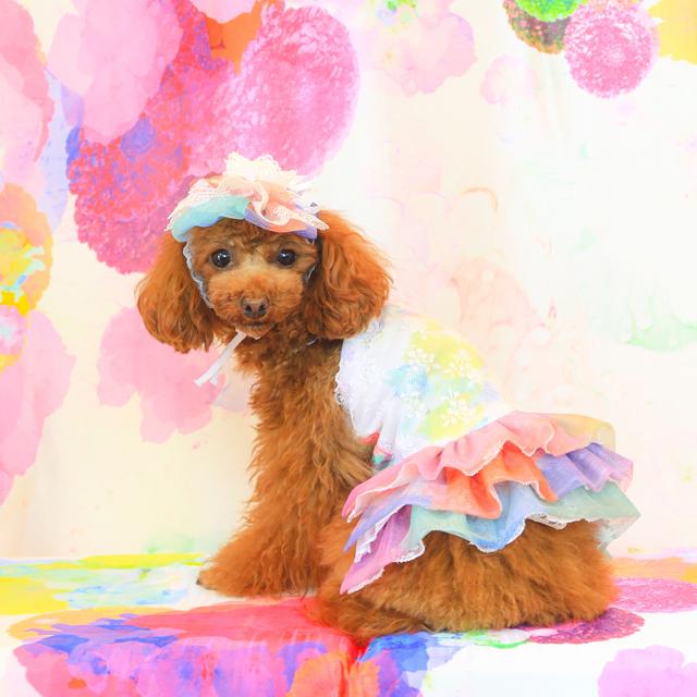jibun-fuku DOG 【スカート・チューブドレス】 DOGBSK2018188