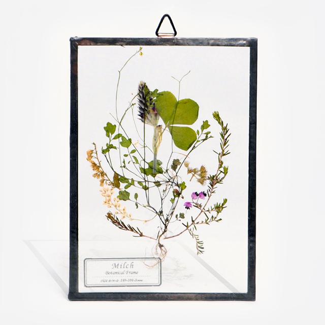 Botanical Frame S16(A_Black)