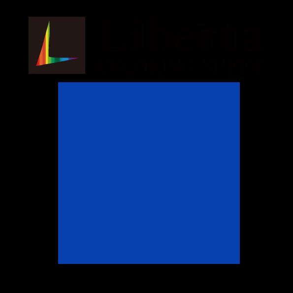 リベルタ LCS1659 ライトブルー 長期屋外用