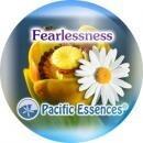 フィアレスネス[Fearlessness]『恐れの解放』