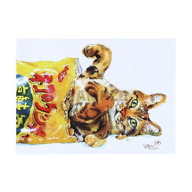 台湾ポストカード 水彩猫「跟洋芋片一起墜落」