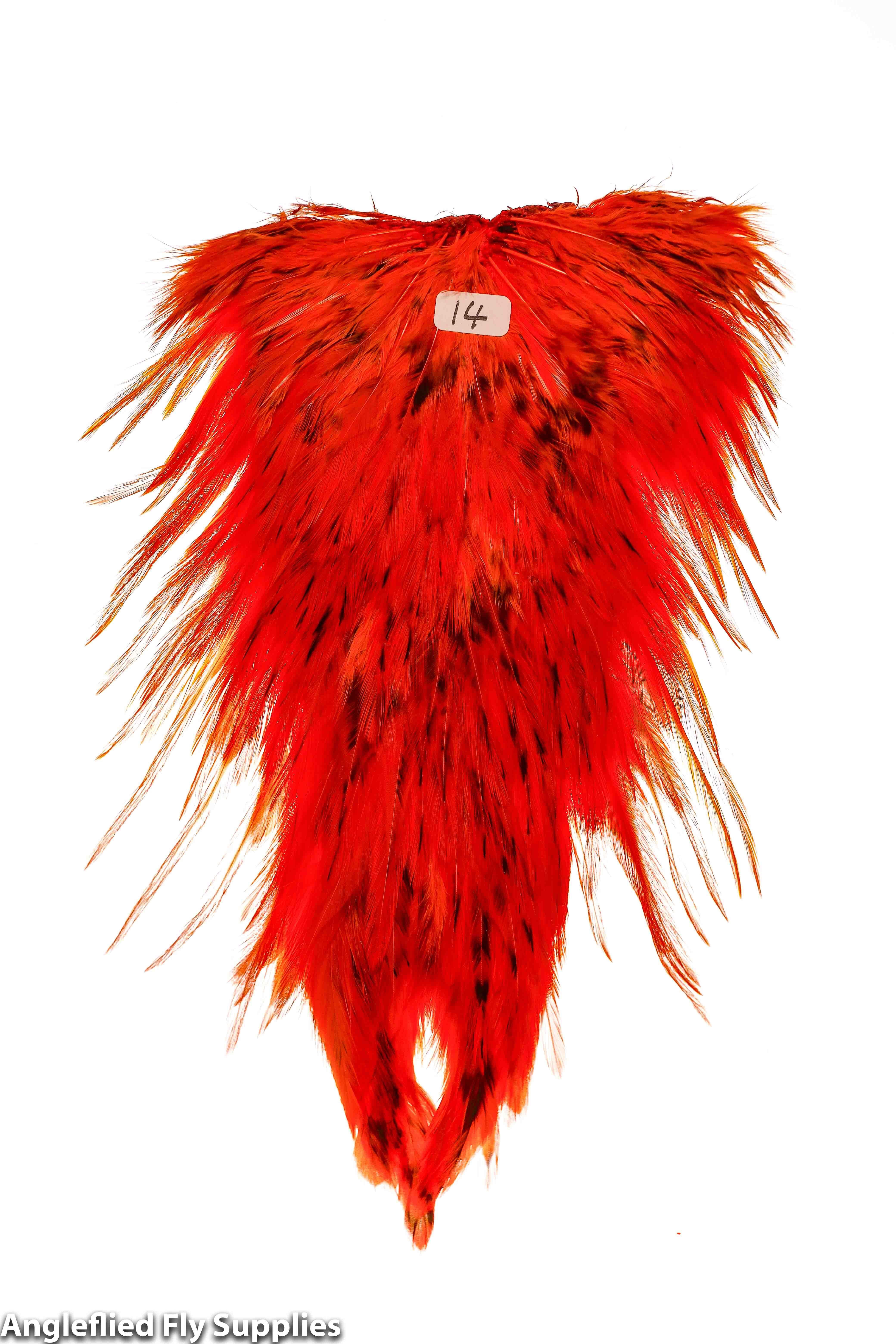 【 AFS 】Indian Cock Saddle dyd ORANGE