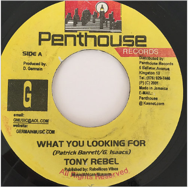Tony Rebel(トニーレベル) - What You Looking For【7'】