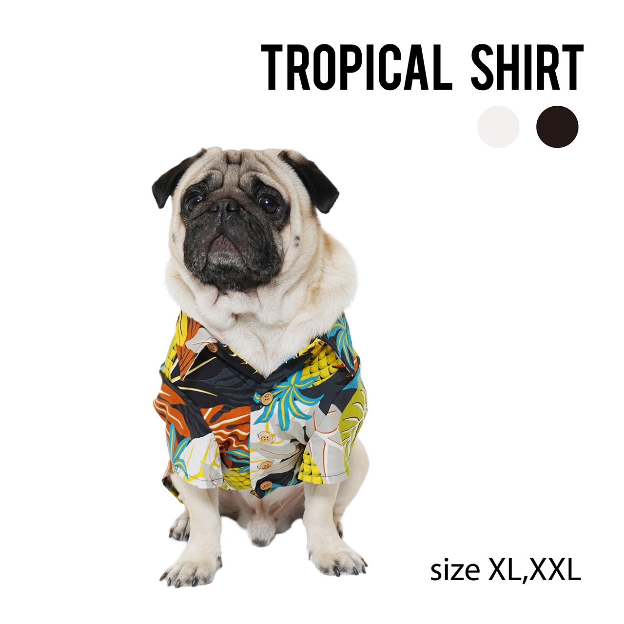 TROPICAL SHIRT(XL,XXL) トロピカルシャツ