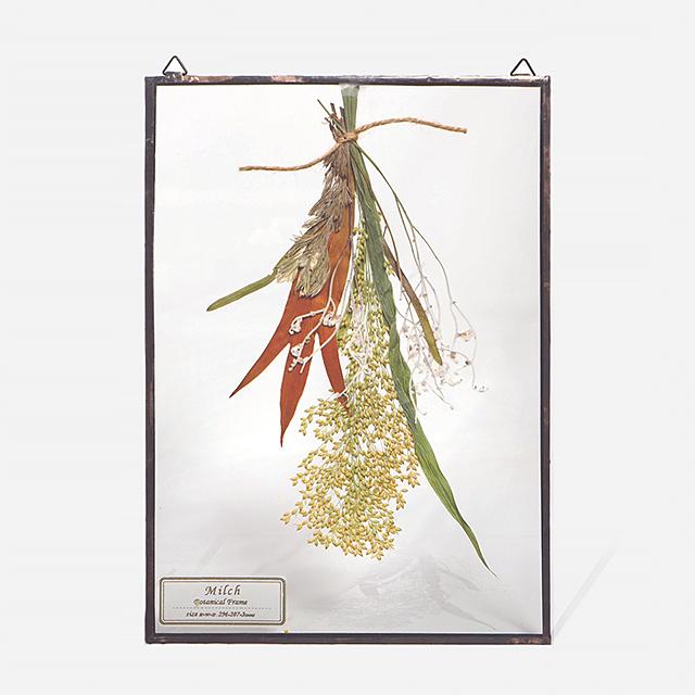 Botanical Frame L2 - Black