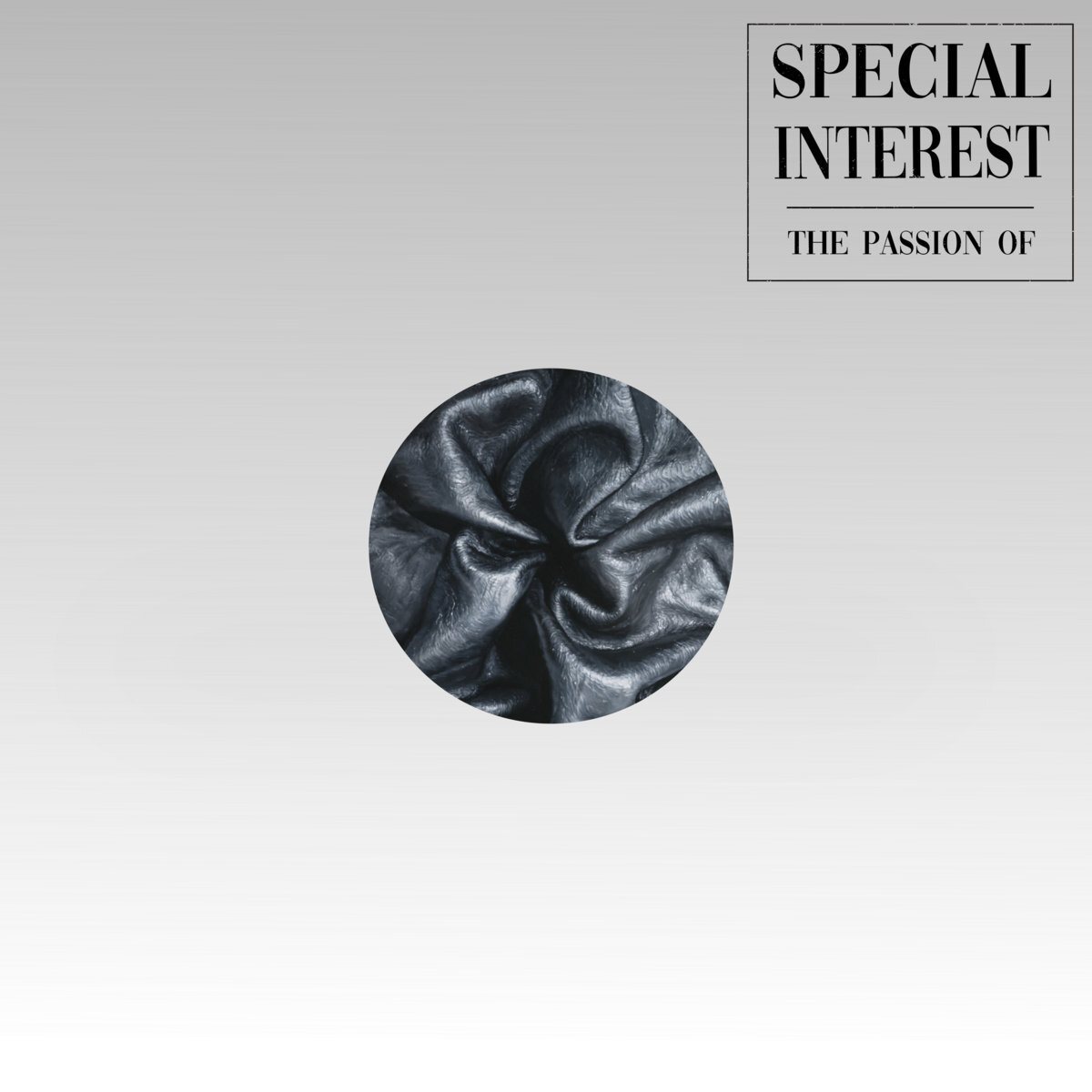 Special Interest - The Passion Of (LP)