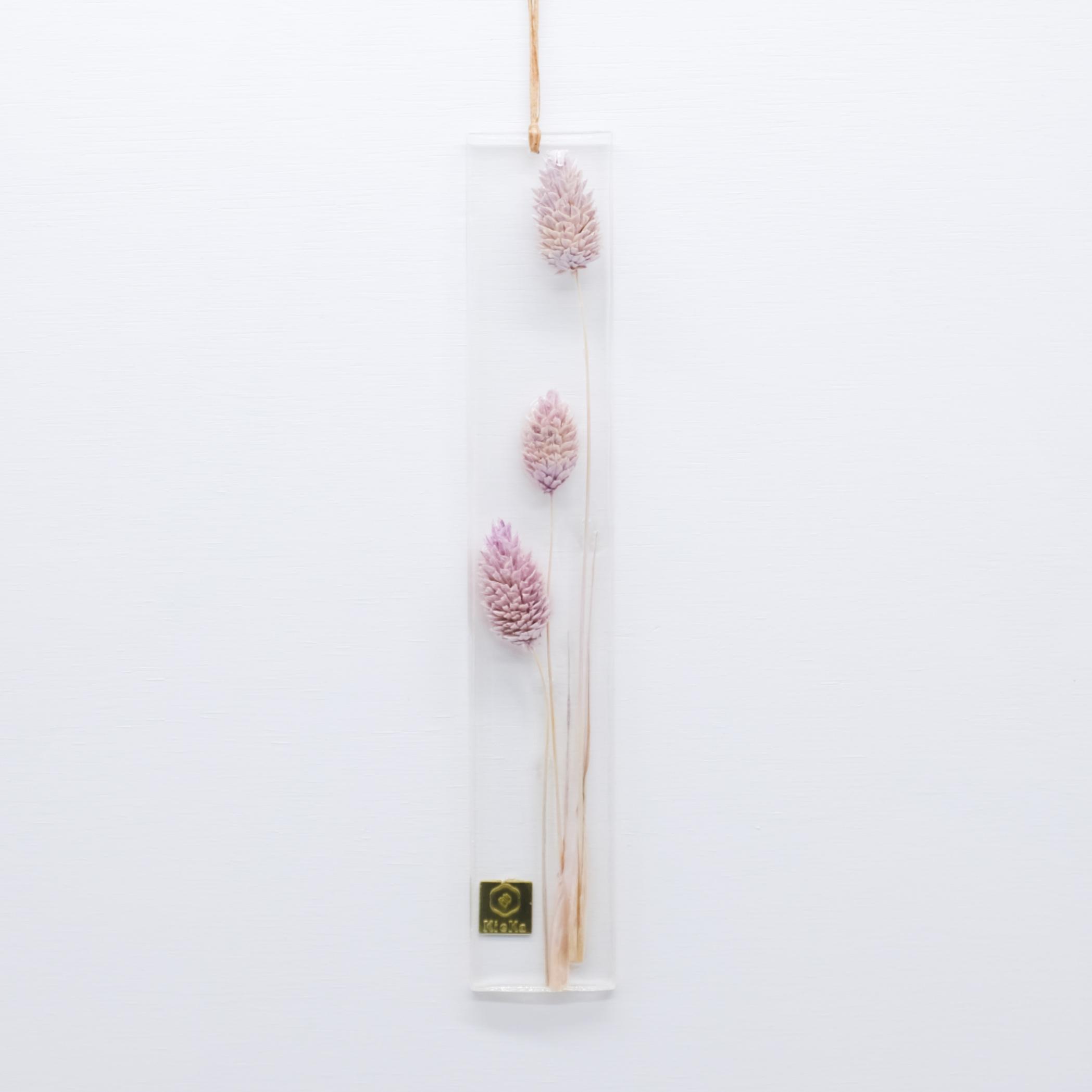 dried flower S ポアプランツ