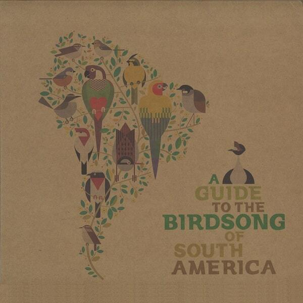 """V.A """"A Guide to the Birdsong of South America"""""""