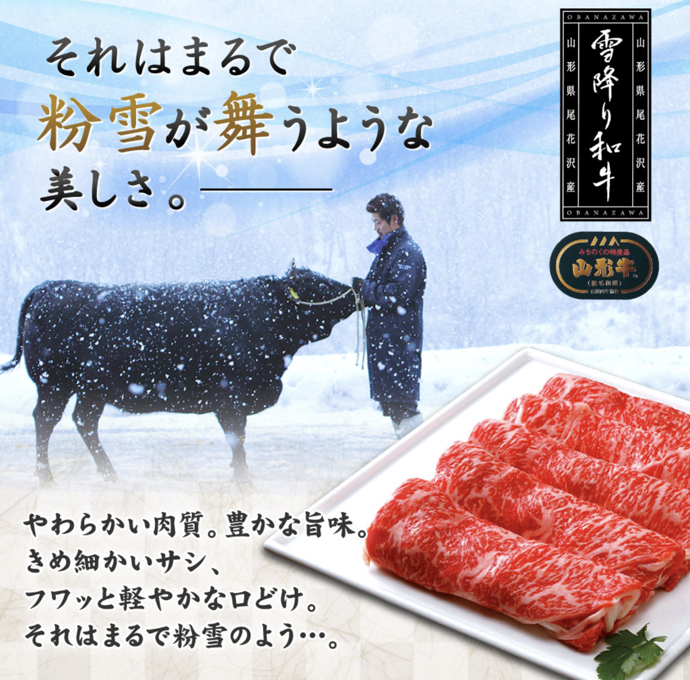 【雪降り和牛】極上サーロインステーキ 3人前 200g×3枚 山形牛 A4-5ランク