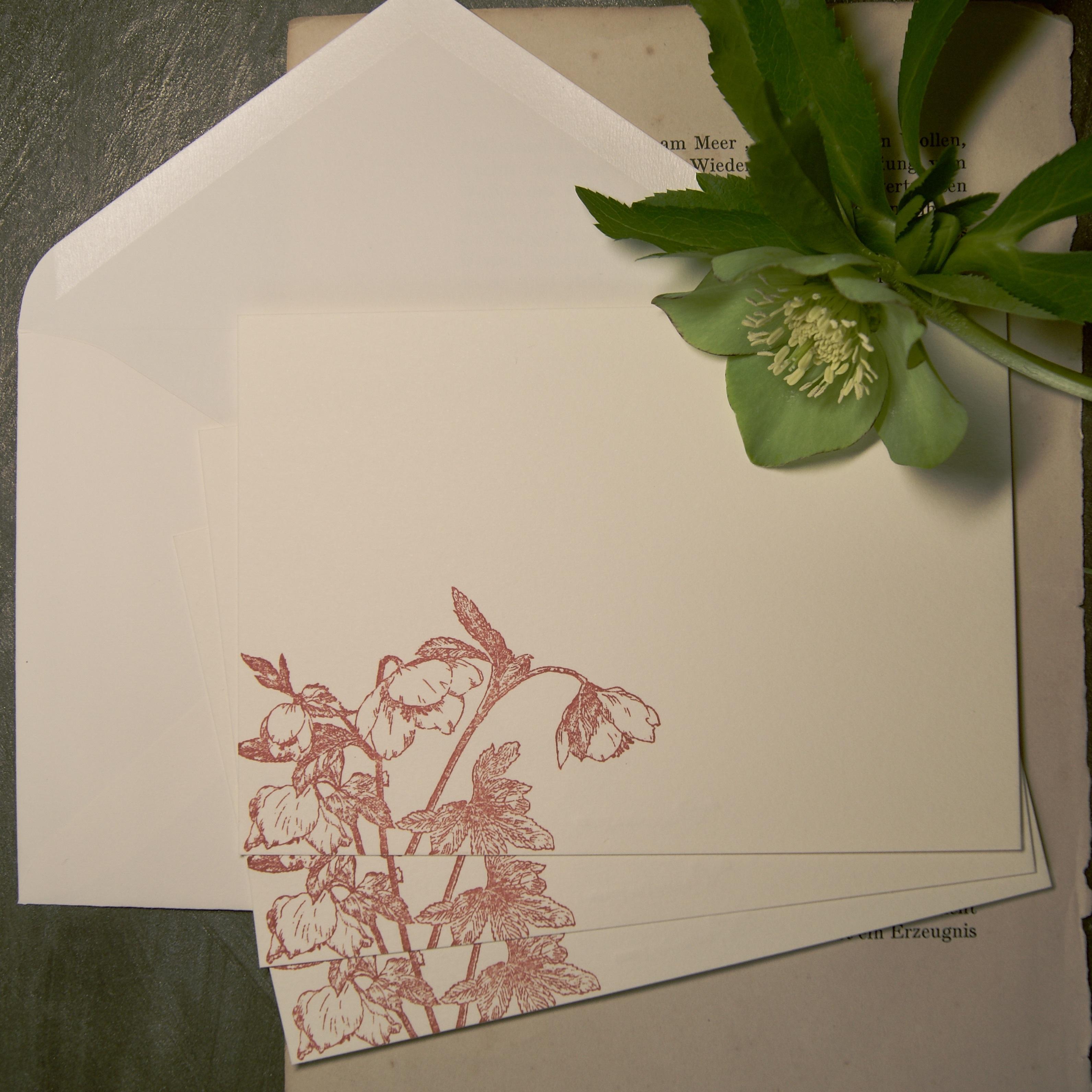 【コレスポンデンスカード】   クリスマスローズ / カード3枚+封筒3枚セット