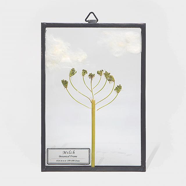 Botanical Frame S8 - Black
