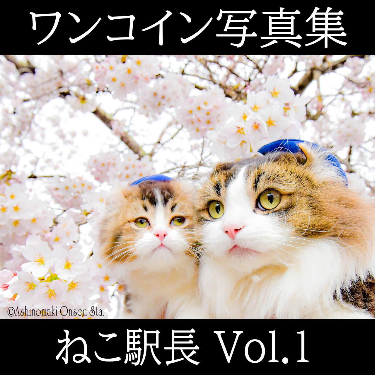 ねこ駅長 ワンコイン写真集 Vol.1