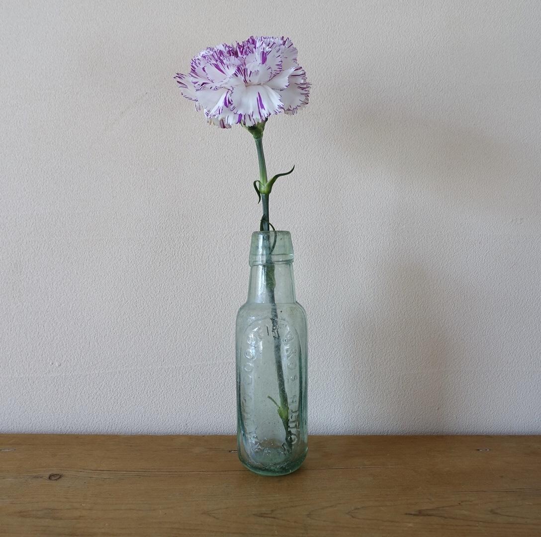 どっしりとしたガラス瓶