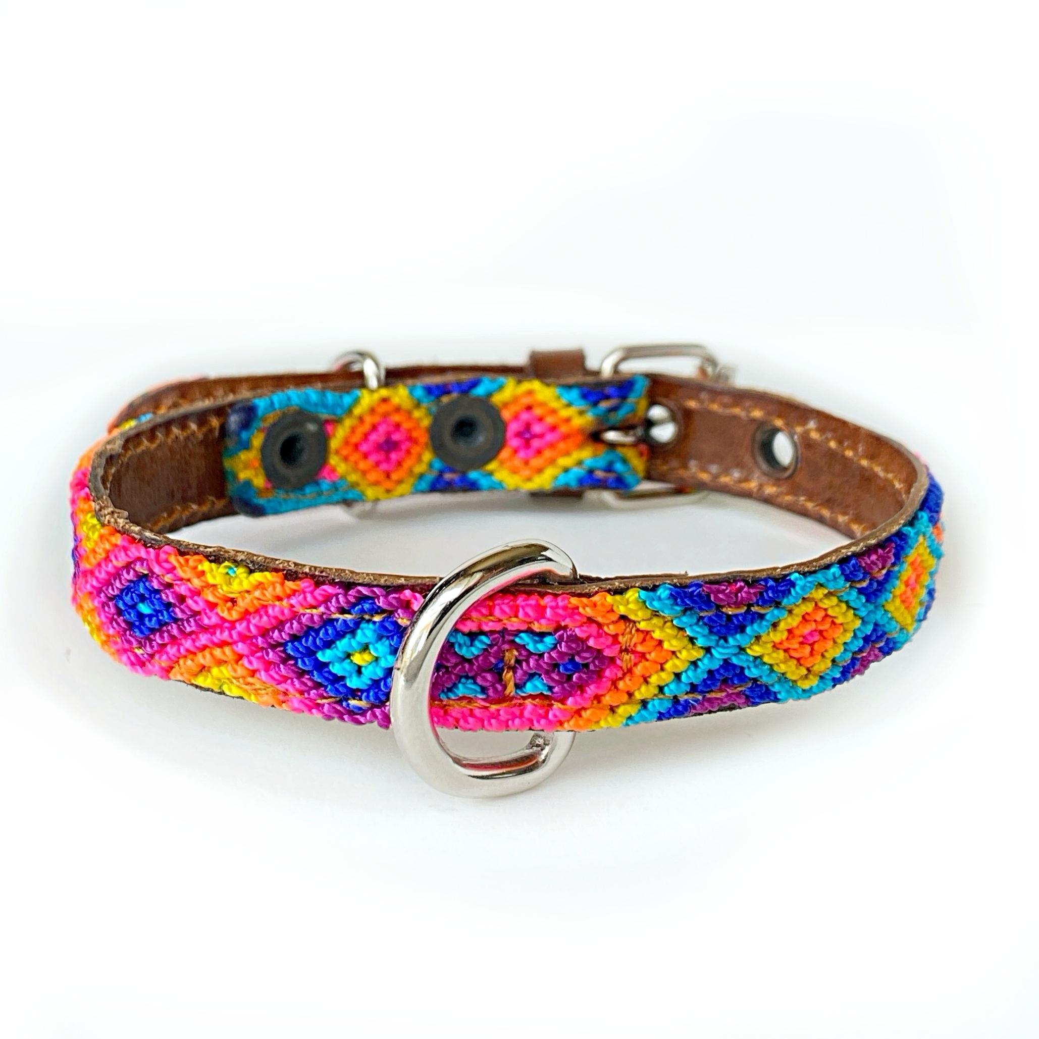 犬の首輪 -サイズXS mini- [デイドリーム]